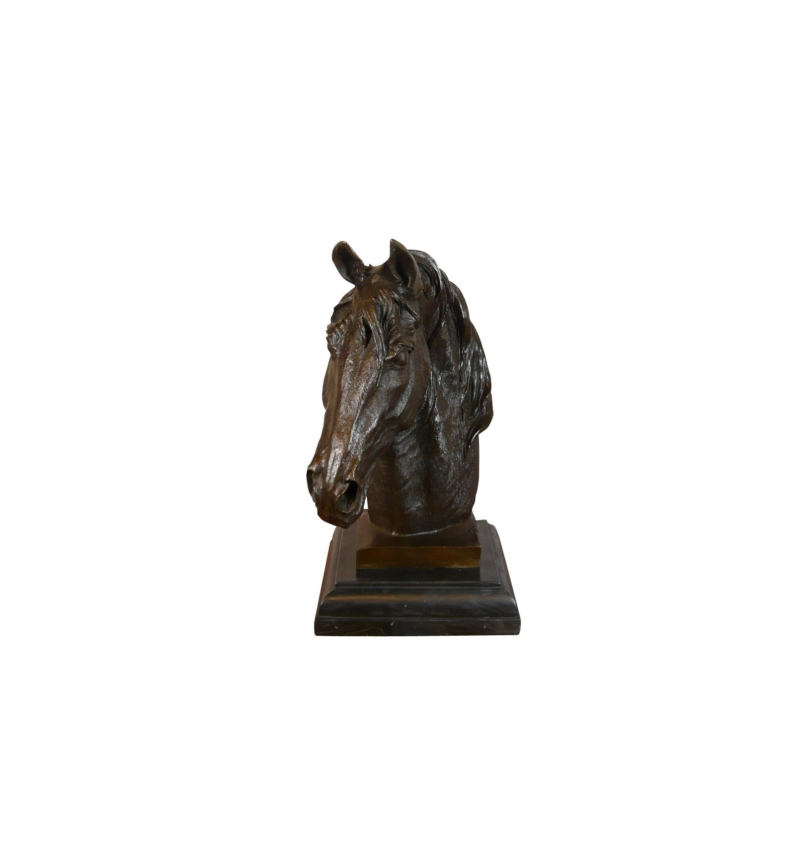 A Bronze Statue Of The Bust Of A Horse Sculpture
